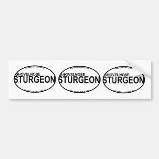Shovelnose Sturgeon Euro Stickers Bumper Sticker