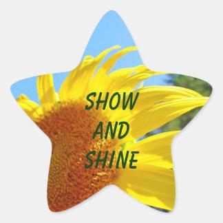 Show and Shine start stickers Summer Sunflower