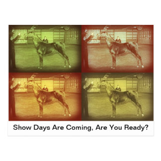 Show Days Postcard