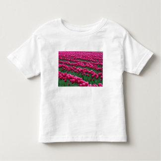 Show garden of spring-flowering tulip bulbs in toddler t-shirt