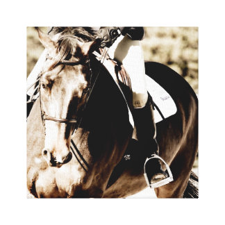 Show Horse Canvas Print