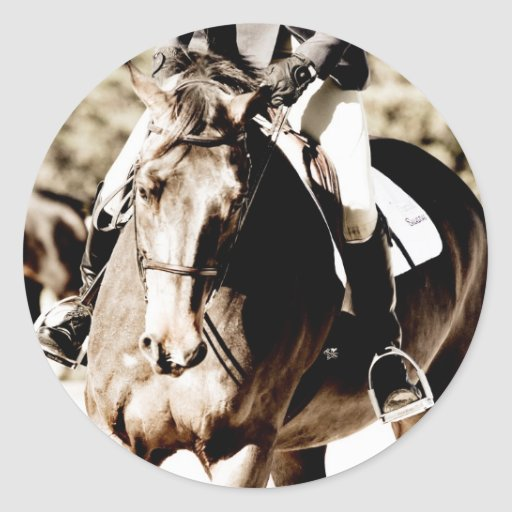 Show Horse Stickers