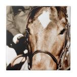 Show Horse Tile