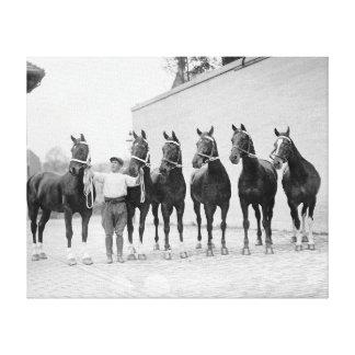 Show Horses, 1912 Canvas Print