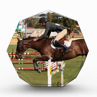 Show jumping horse and rider 2 awards