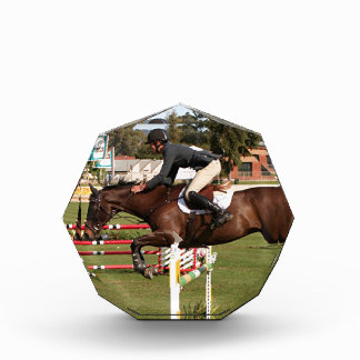 Show jumping horse and rider 2 award