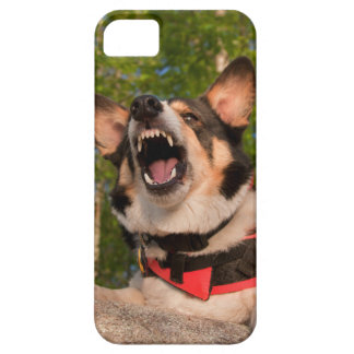 Show Me Angry iPhone SE/5/5s Case