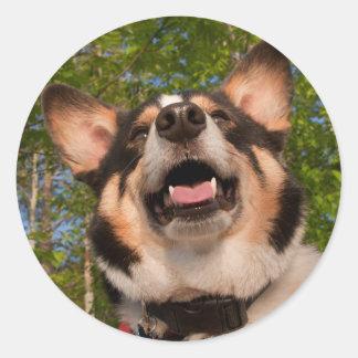 Show Me Happy Classic Round Sticker