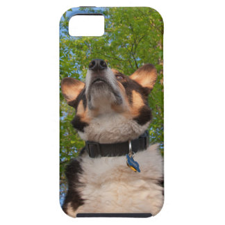 Show Me Intrigue iPhone SE/5/5s Case
