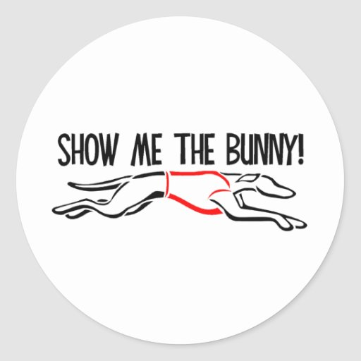 Show me the Bunny! Classic Round Sticker
