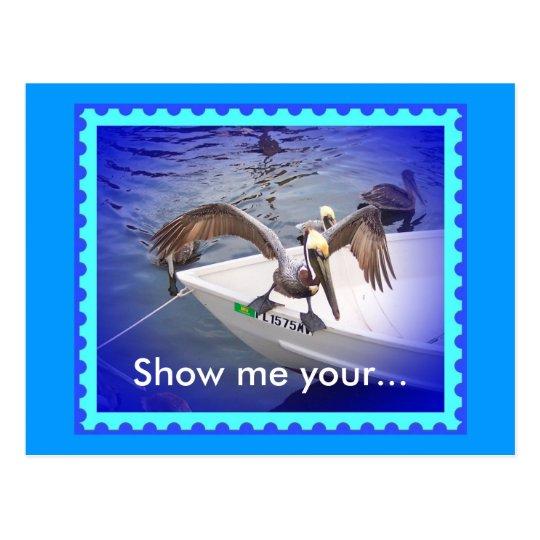 Show Me Your Fishy! Postcard