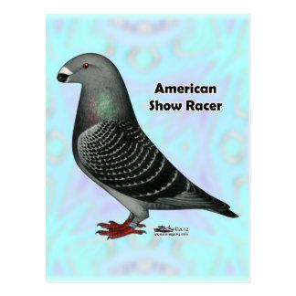 Show Racer ASR Postcard
