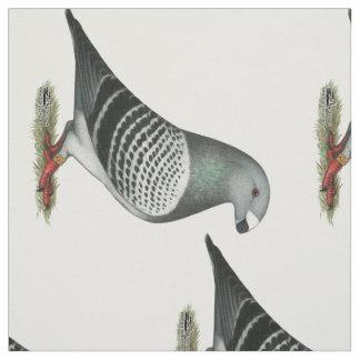 Show Racer Blue Checker Pigeon Fabric