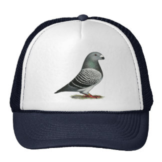 Show Racer Blue Checker Pigeon Trucker Hat
