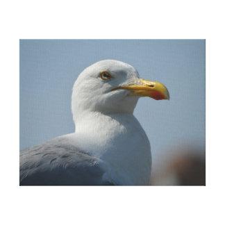 `Show Seagull` Canvas Print