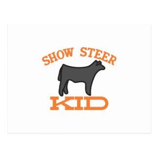 Show Steer Kid Postcard
