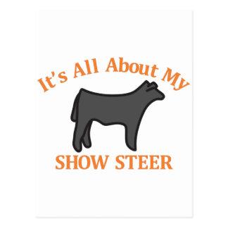 Show Steer Postcard