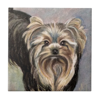 Show Yorkie Abby Small Square Tile