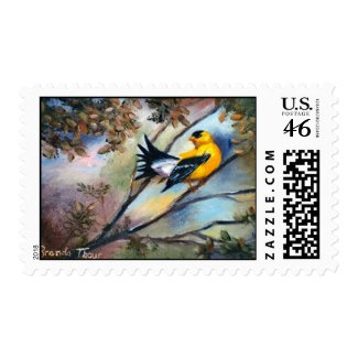 Showing Off Bird Postage stamp