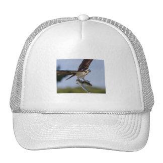 Showing Off Trucker Hat