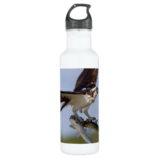 Showing Off Stainless Steel Water Bottle