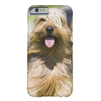 showing tongue, long hair, portrait barely there iPhone 6 case