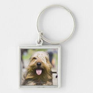 showing tongue, long hair, portrait keychain