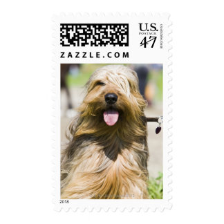 showing tongue, long hair, portrait postage