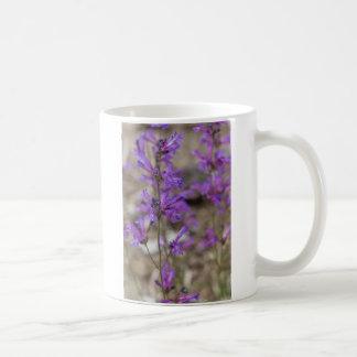 Showy Penstemon Flowers on Mt. Shasta Coffee Mug