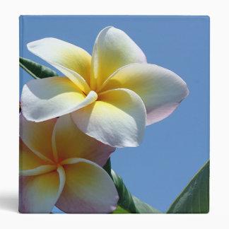Showy Plumeria Frangipani Blooms 3 Ring Binder