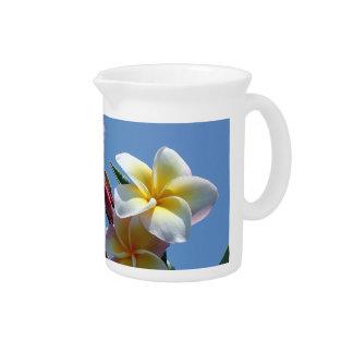 Showy Plumeria Frangipani Blooms Beverage Pitcher