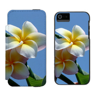 Showy Plumeria Frangipani Blooms iPhone SE/5/5s Wallet Case