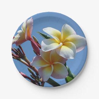 Showy Plumeria Frangipani Blooms Paper Plate