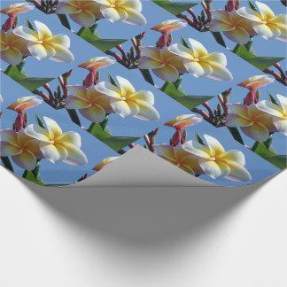 Showy Plumeria Frangipani Blooms Wrapping Paper