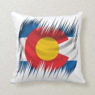 Shredded Colorado Pillow