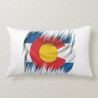 Shredded Colorado Throw Pillow