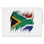 Shredders South Africa Flag Cards