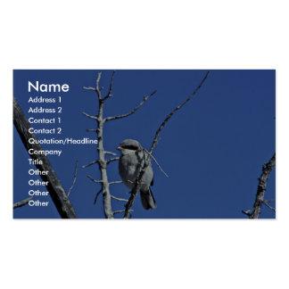 Shrike del necio tarjetas de visita