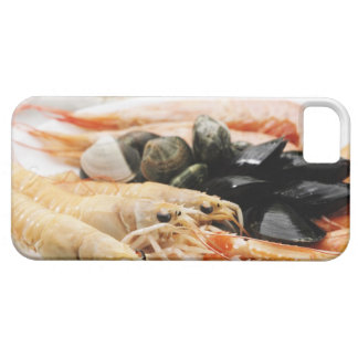 Shrimp and mussels iPhone 5 cover