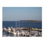 Shrimp boats postcard