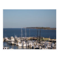 Shrimp boats postcard