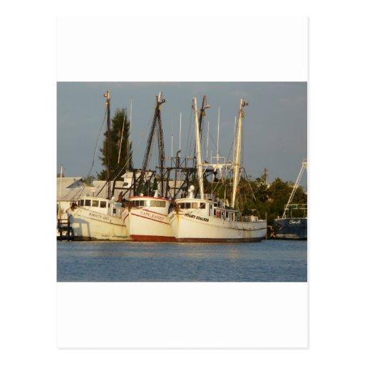 Shrimp Boats x three Postcard