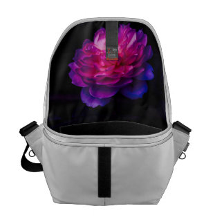 Shrimp Climbing An Anemone Courier Bag