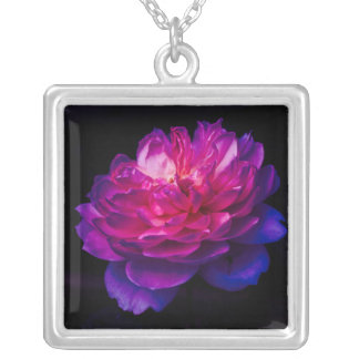 Shrimp Climbing An Anemone Silver Plated Necklace