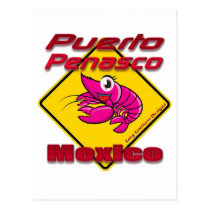 Shrimp Crossing Puerto Penasco Mexico Postcard