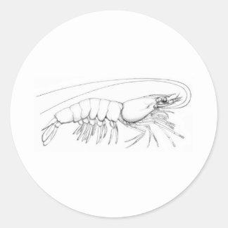 Shrimp Logo Classic Round Sticker