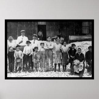 Shrimp Pickers Children 1911 Posters