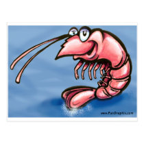 Shrimp Postcard