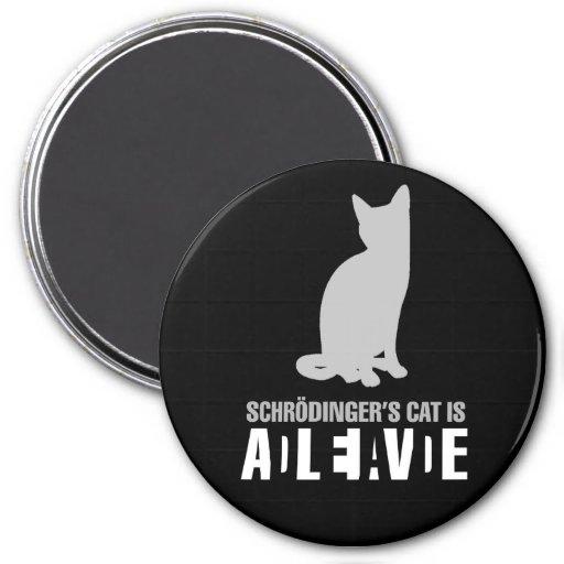 Shrodinger's Cat Magnet