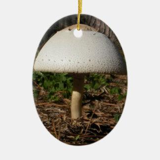 Shroom 0659 Oval Ornament